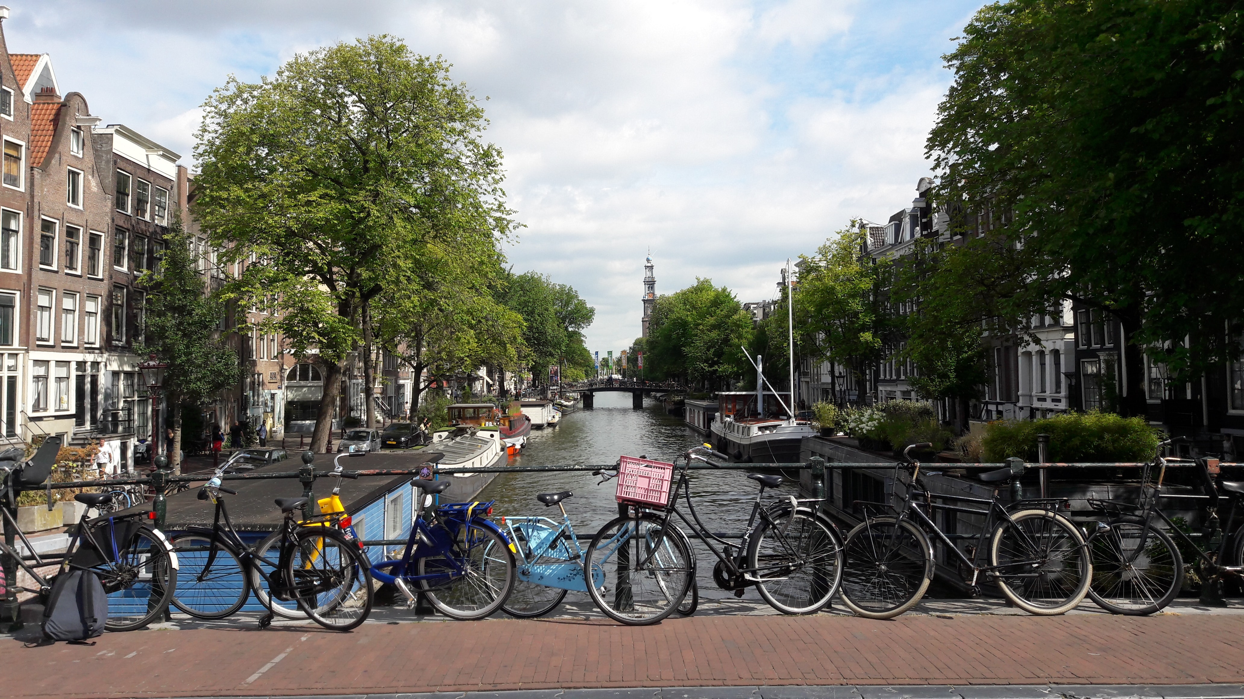 bicycles parked near body of water