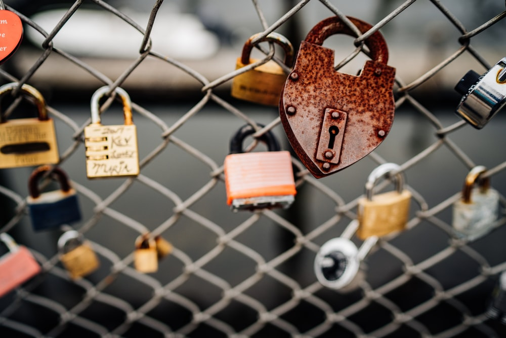 padlocks on chain link fence