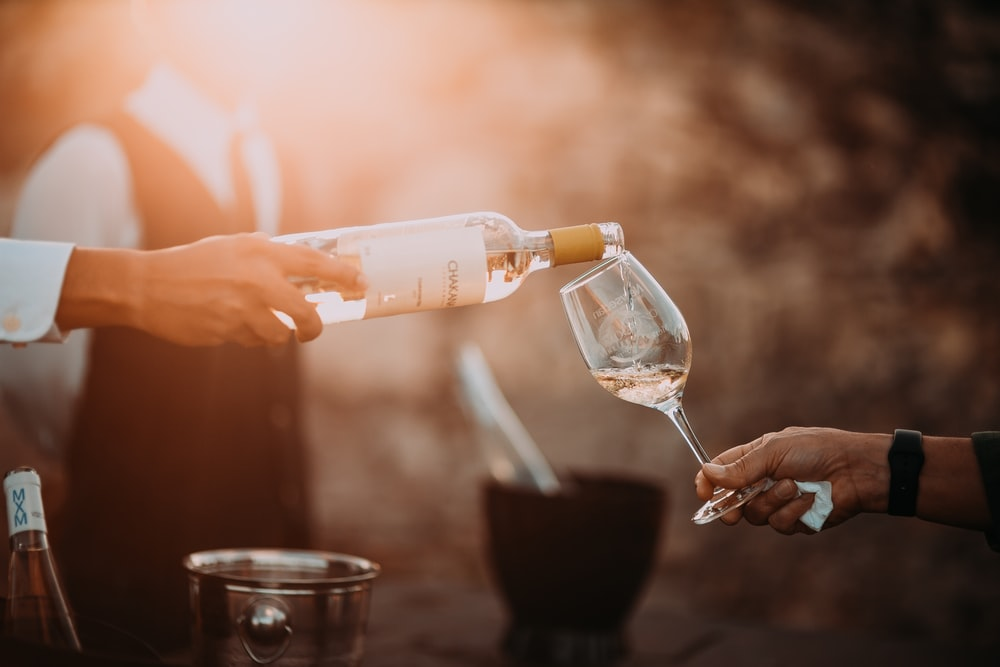 person holding wine glass bottle