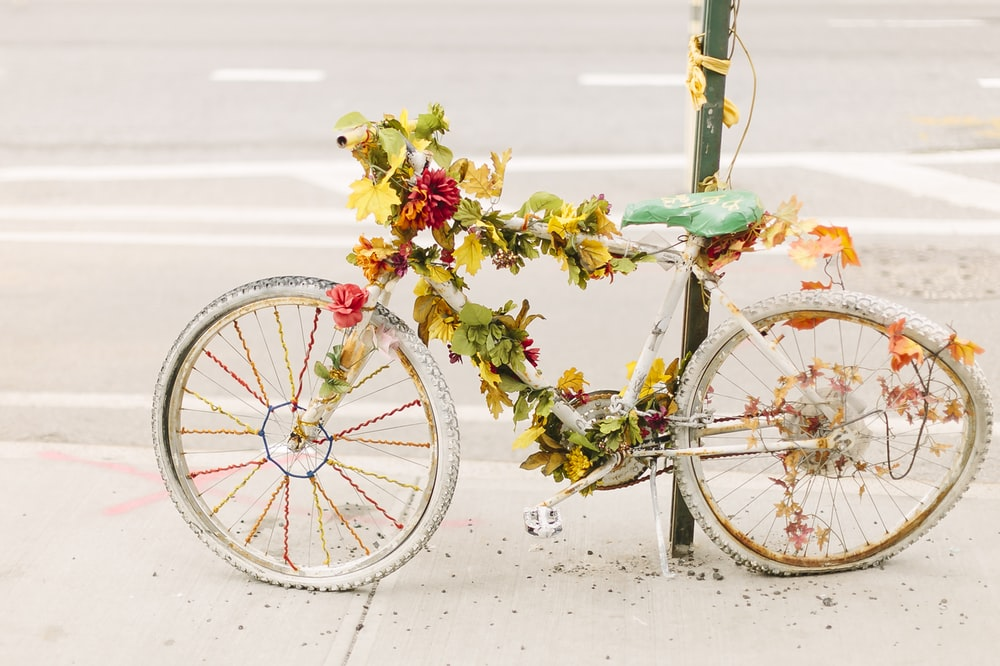 flowers on bike leaned on post near road