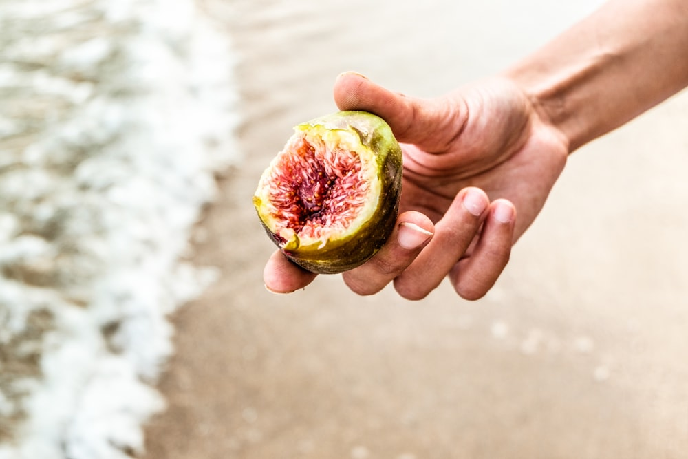 person holding round green fruit overlooking beach waves on shore at daytime