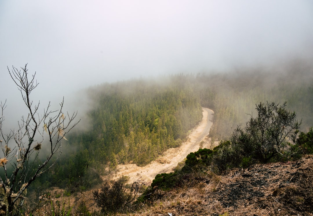 First day of a five day hiking, in Mafate, Reunion Island. We started in this heavy fog all around. Suddenly it vanished to let this path appear for a second. Just a second.