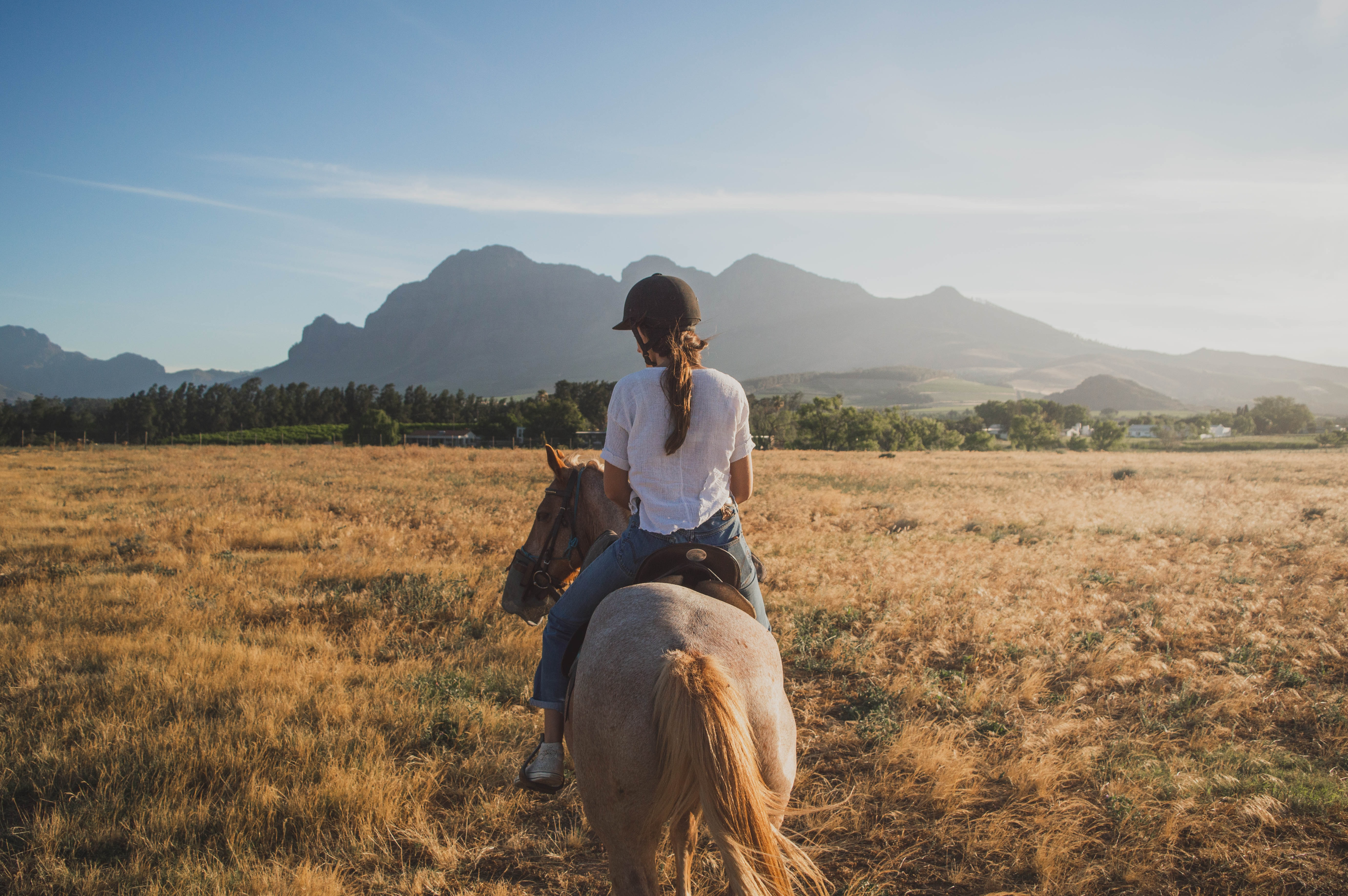woman riding horse on brown grass field
