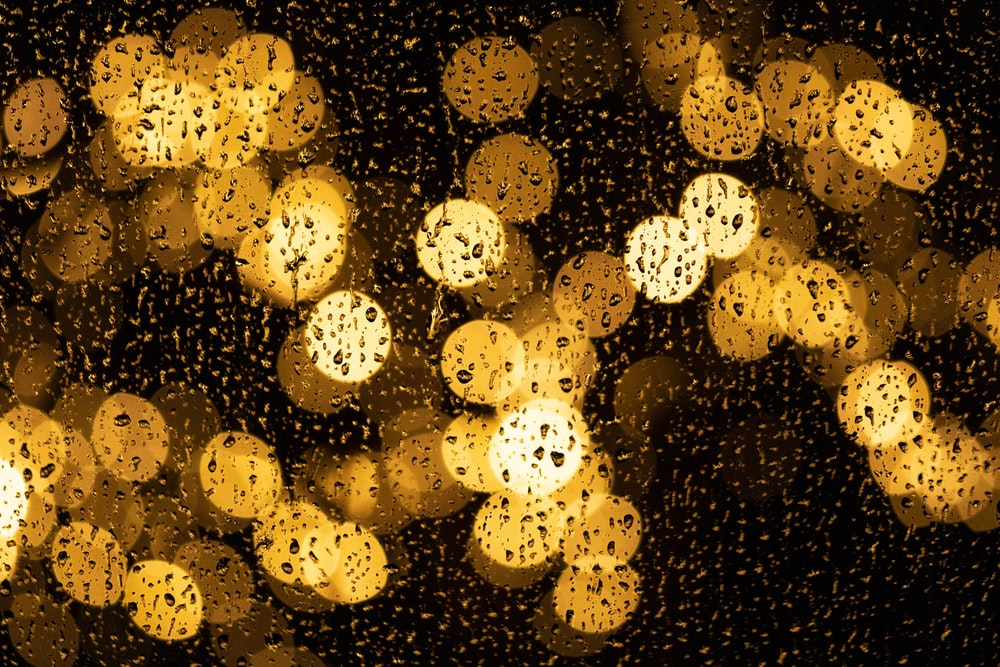 photography of yellow lights