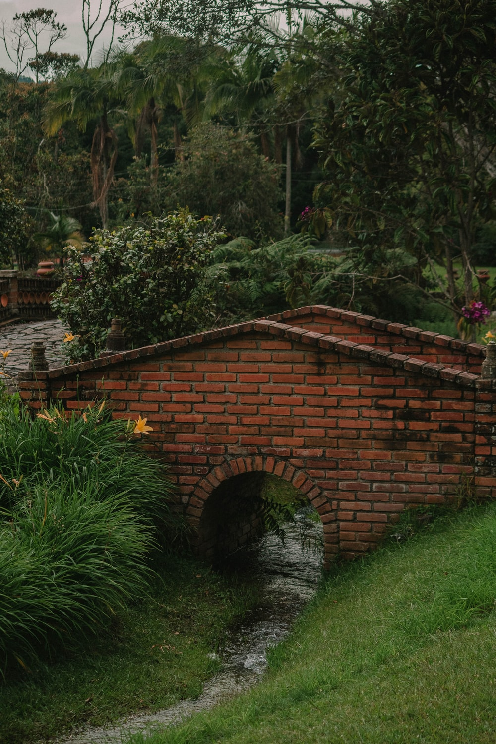empty brick bridge surrounded by trees during daytime