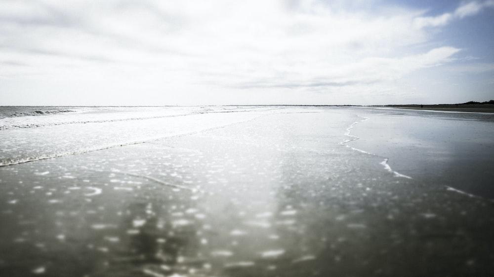 closeup photography of seashore