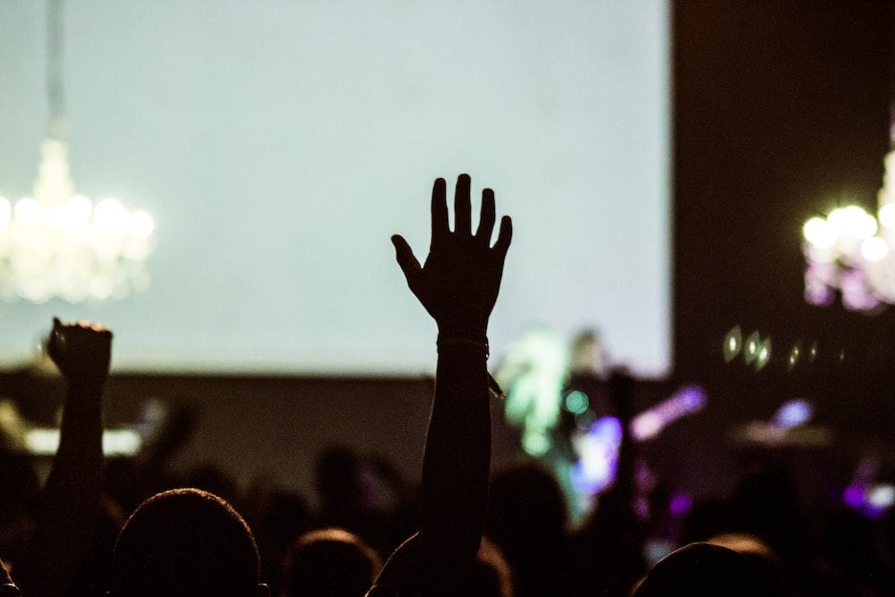 silhouette photography of human hand raising