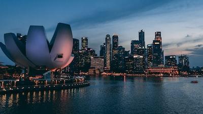 landscape photography of sydney, australia singapore zoom background