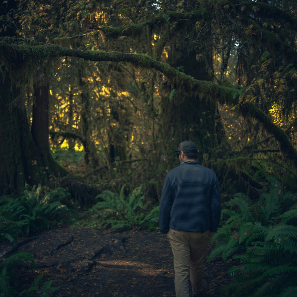 man walking at the forest