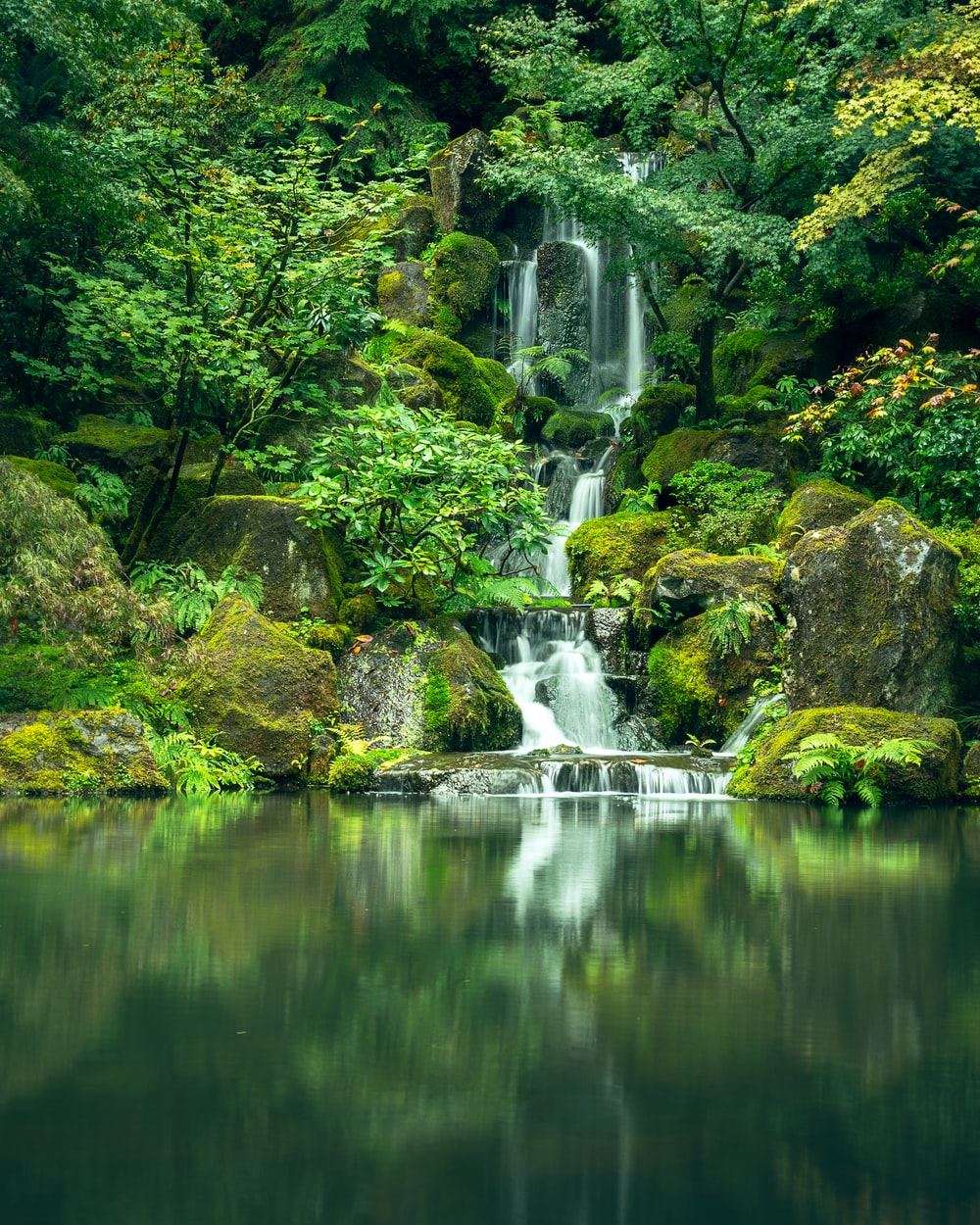 waterfalls surrounded by green-leafed trees during daytime
