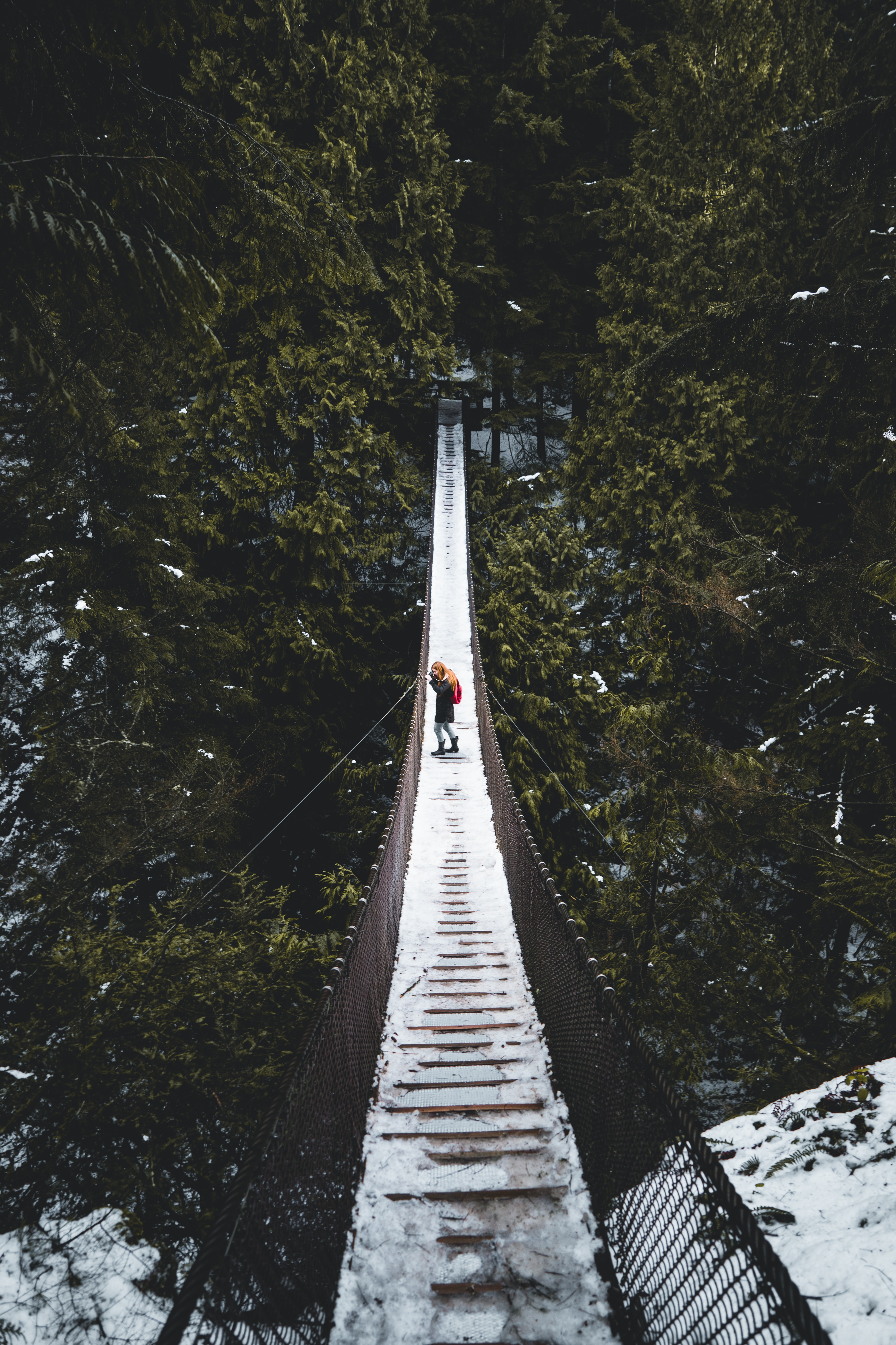 person in the middle of hanging bridge