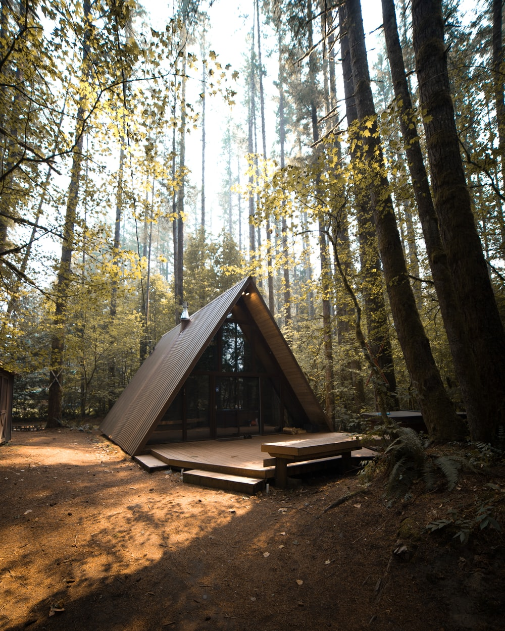 brown wooden cabin in forest
