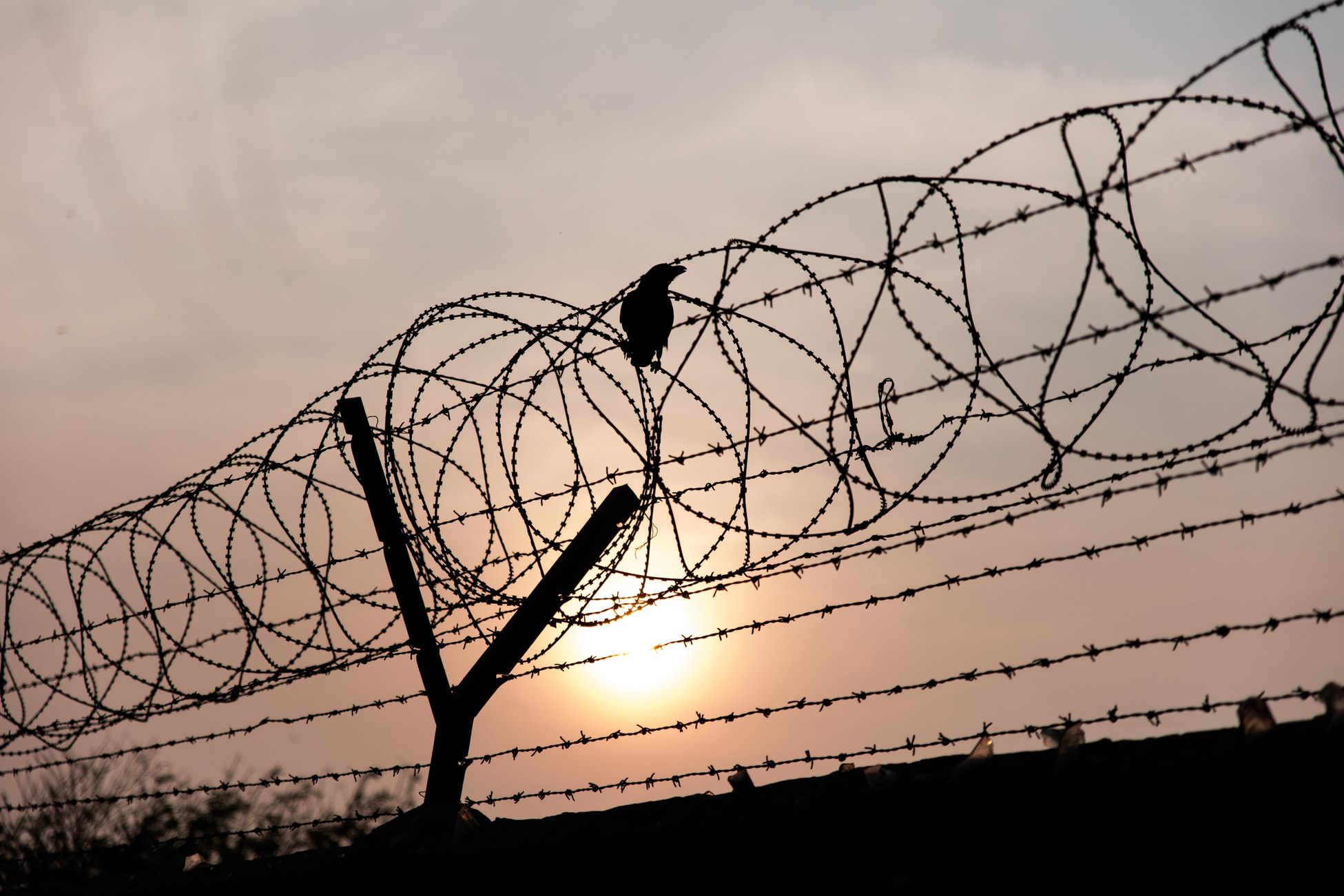 fence with barbed wire at top