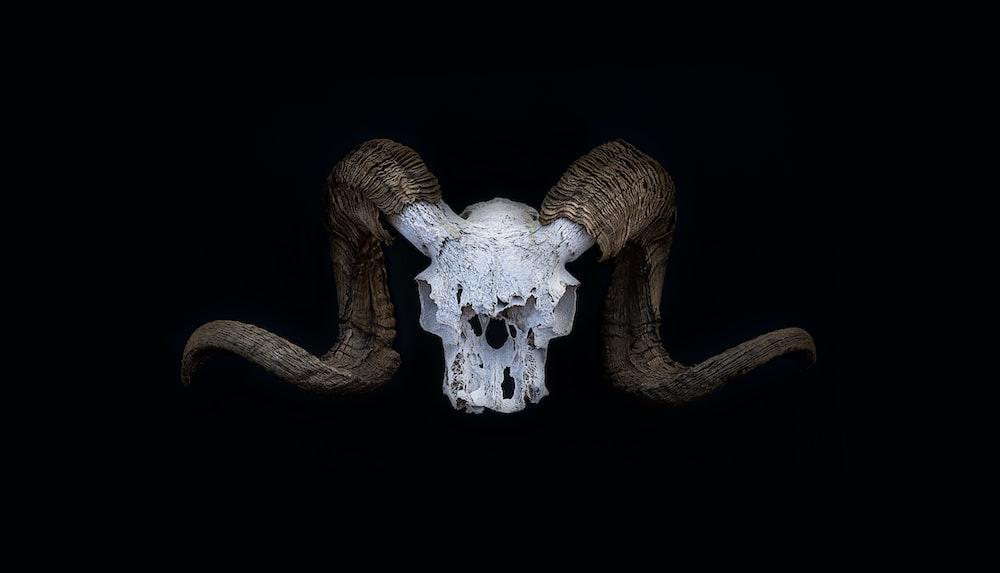 devil horn logo