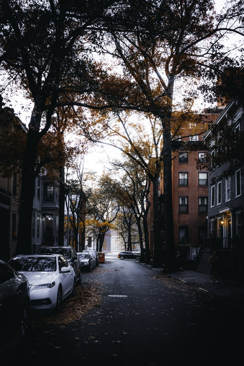 100 Street Pictures Download Free Images On Unsplash