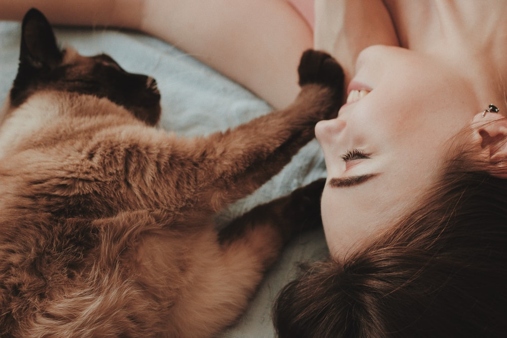 woman lying beside brown cat