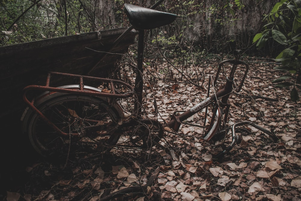 black and gray bike surrounded by trees