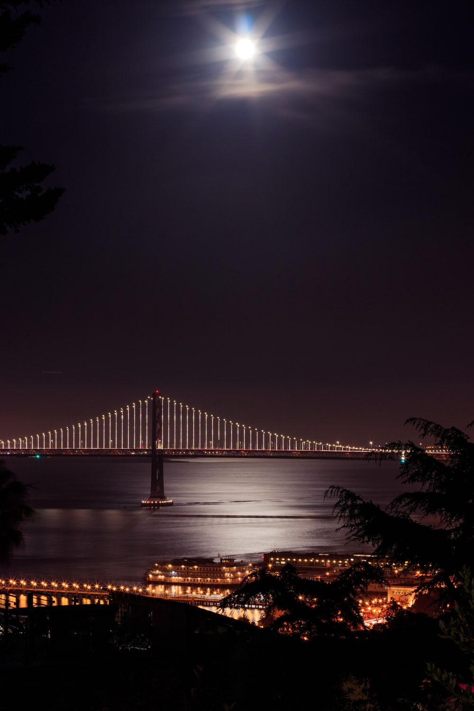 grey and brown concrete bridge