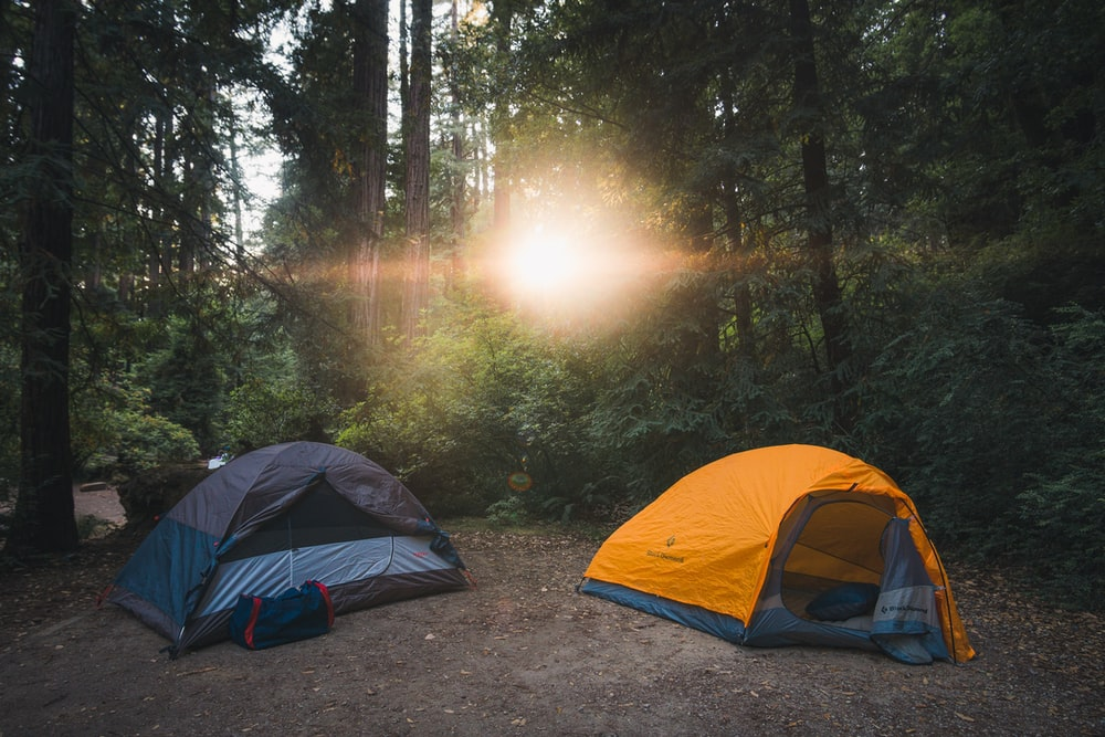 two gray and orange tents between forest