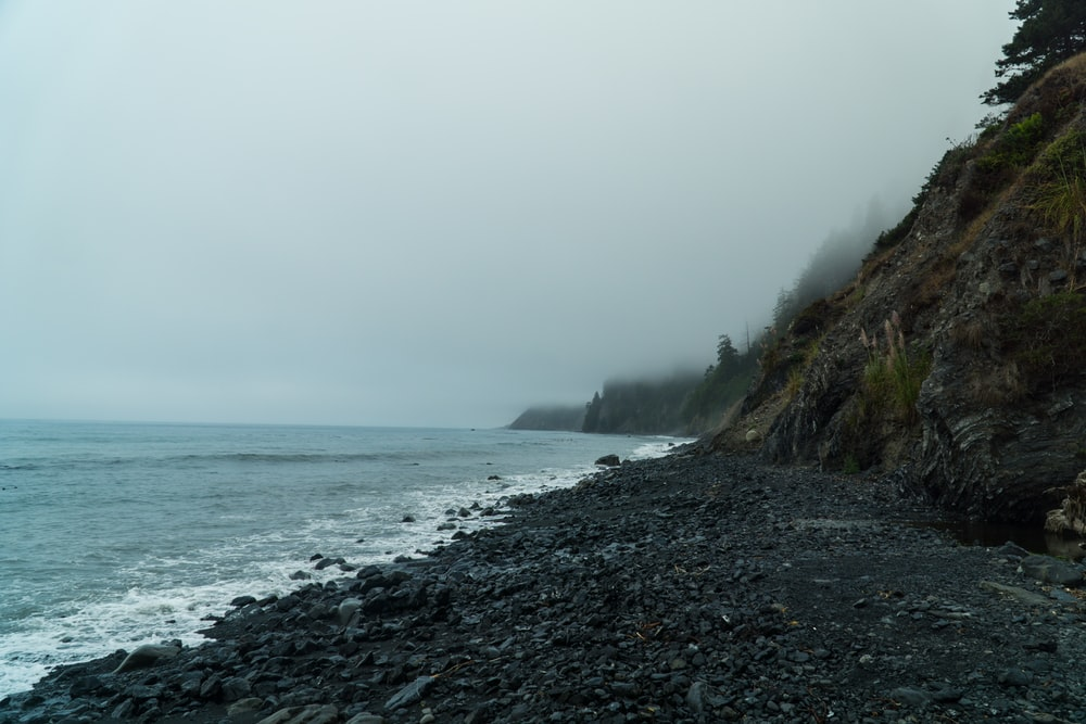 seashore during cloudy day