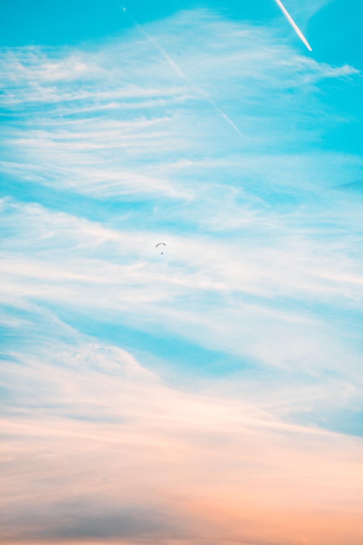 plane on the sky