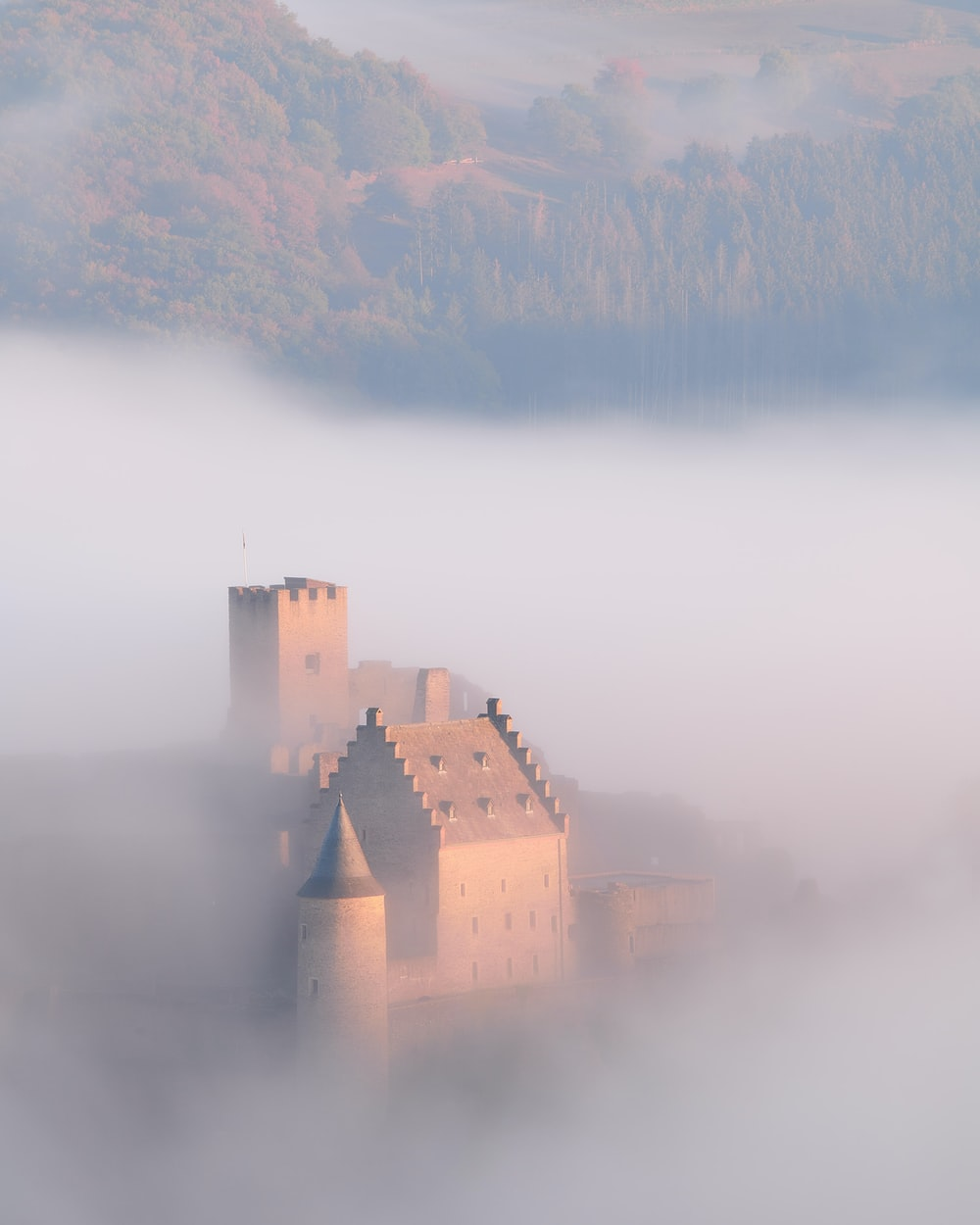 aerial view photography of castle
