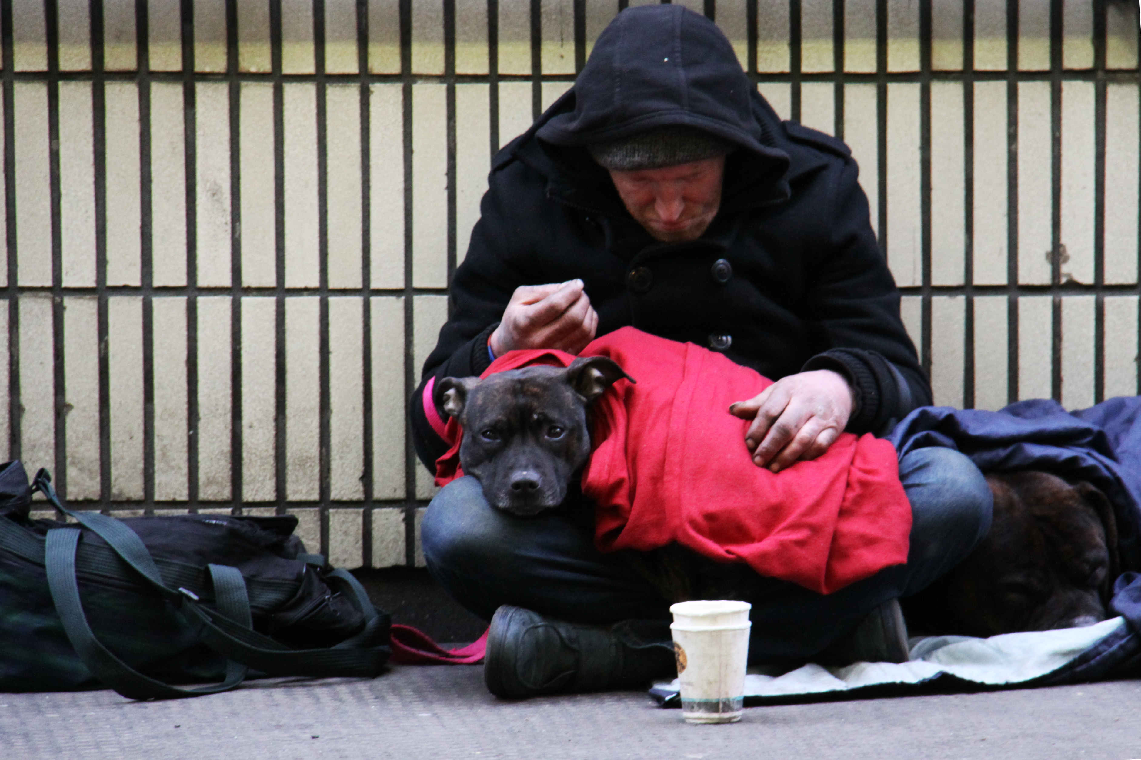 """""""I was working in London and came across this homeless man on the street.  As I went to take this photograph to raise the plight of the homeless, his dog looked right at me with such sorrowful eyes.  It was then that I noticed the larger dog, curled up beside him.  I went to a local store, bought two cans of dog food and him a hot roll and drink from a caf\u00e9.  Since then, each year, rather than buying Christmas cards for family and friends, I always donate enough money to give a homeless person a shower, clothes and cooked meal and a place to stay on Christmas Day, via the UK charity, Crisis."""""""