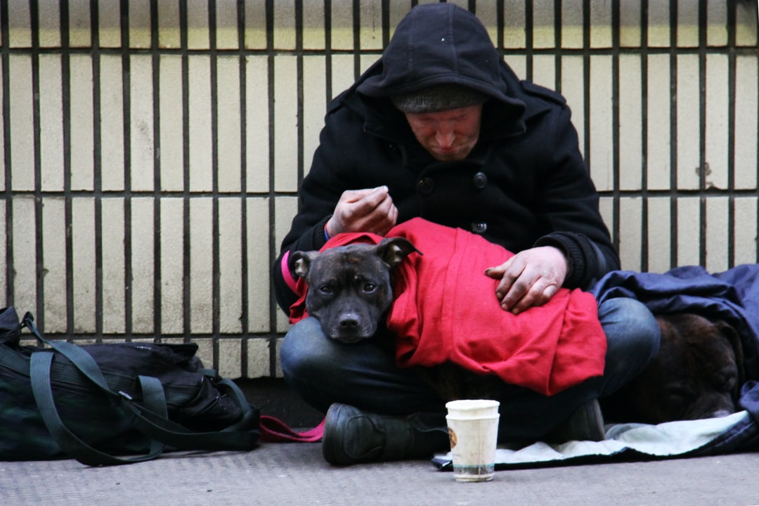 """I was working in London and came across this homeless man on the street.  As I went to take this photograph to raise the plight of the homeless, his dog looked right at me with such sorrowful eyes.  It was then that I noticed the larger dog, curled up beside him.  I went to a local store, bought two cans of dog food and him a hot roll and drink from a caf\u00e9.  Since then, each year, rather than buying Christmas cards for family and friends, I always donate enough money to give a homeless person a shower, clothes and cooked meal and a place to stay on Christmas Day, via the UK charity, Crisis."""
