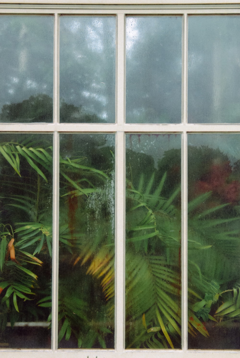 clear glass window with white wooden pane