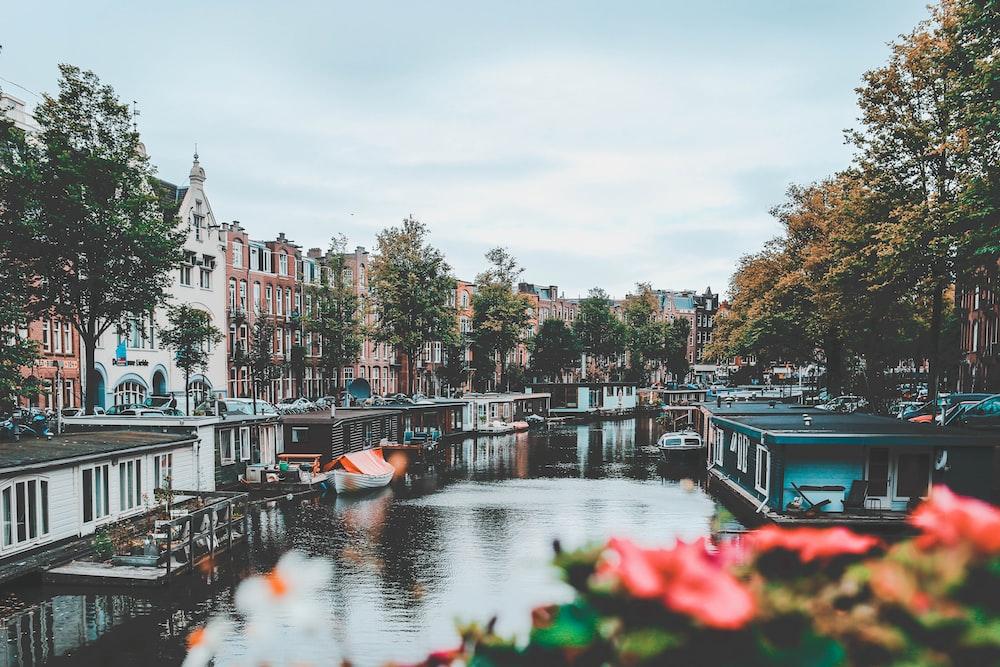 Holanda um dos melhores países do mundo para ciclistas