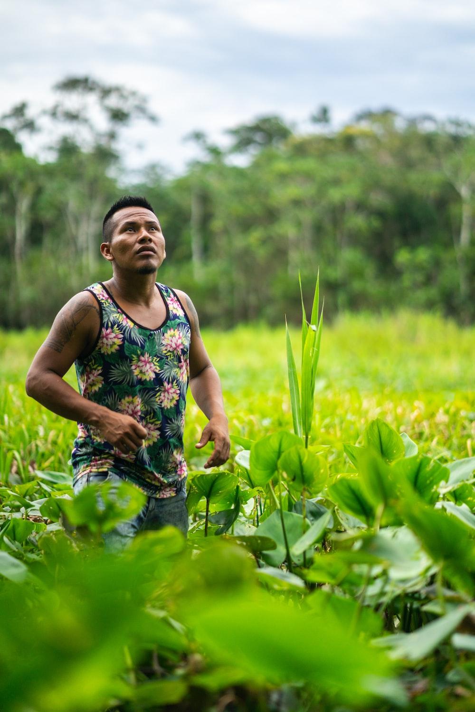 man standing between green plants