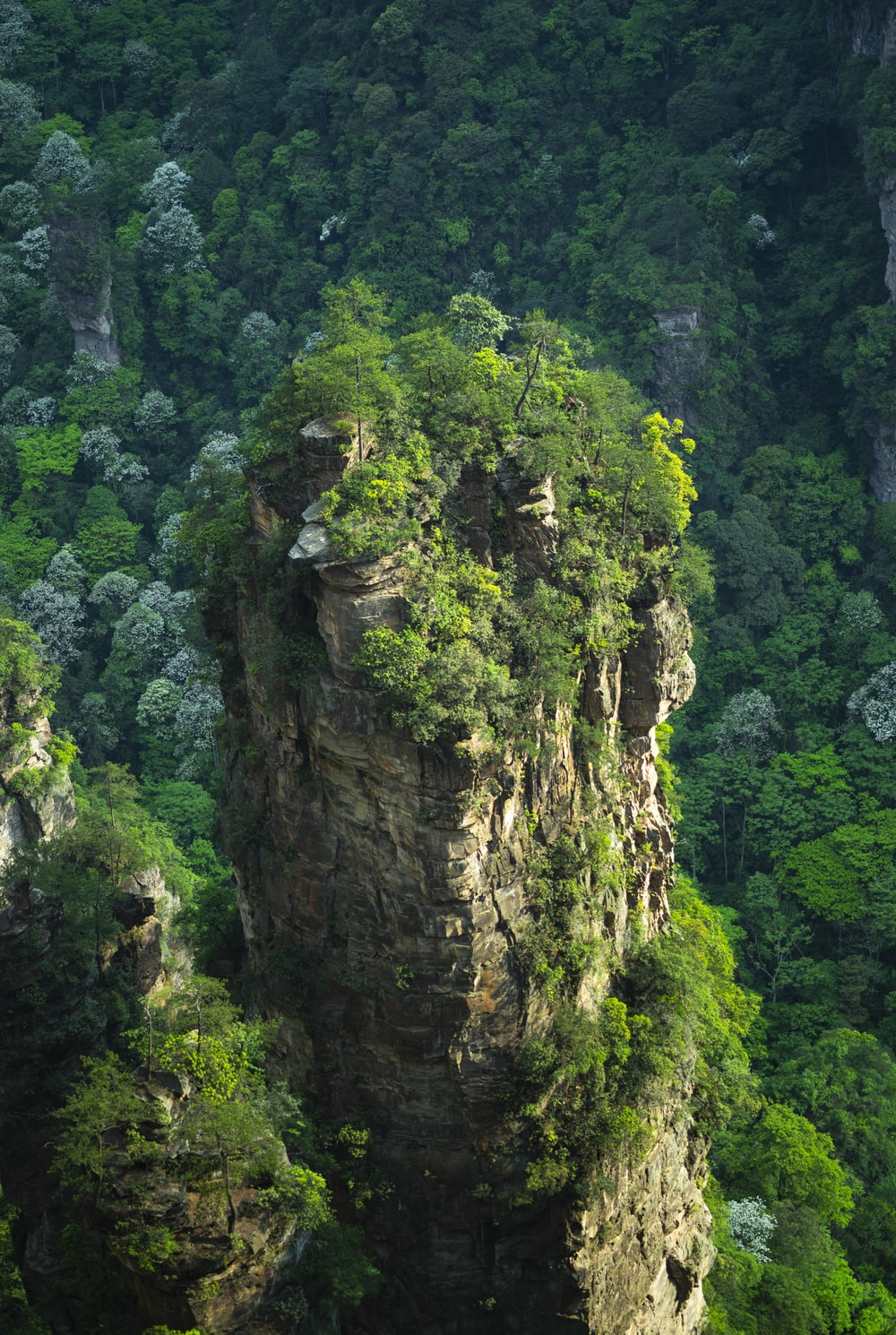 aerial photography of brown rock formation with plants