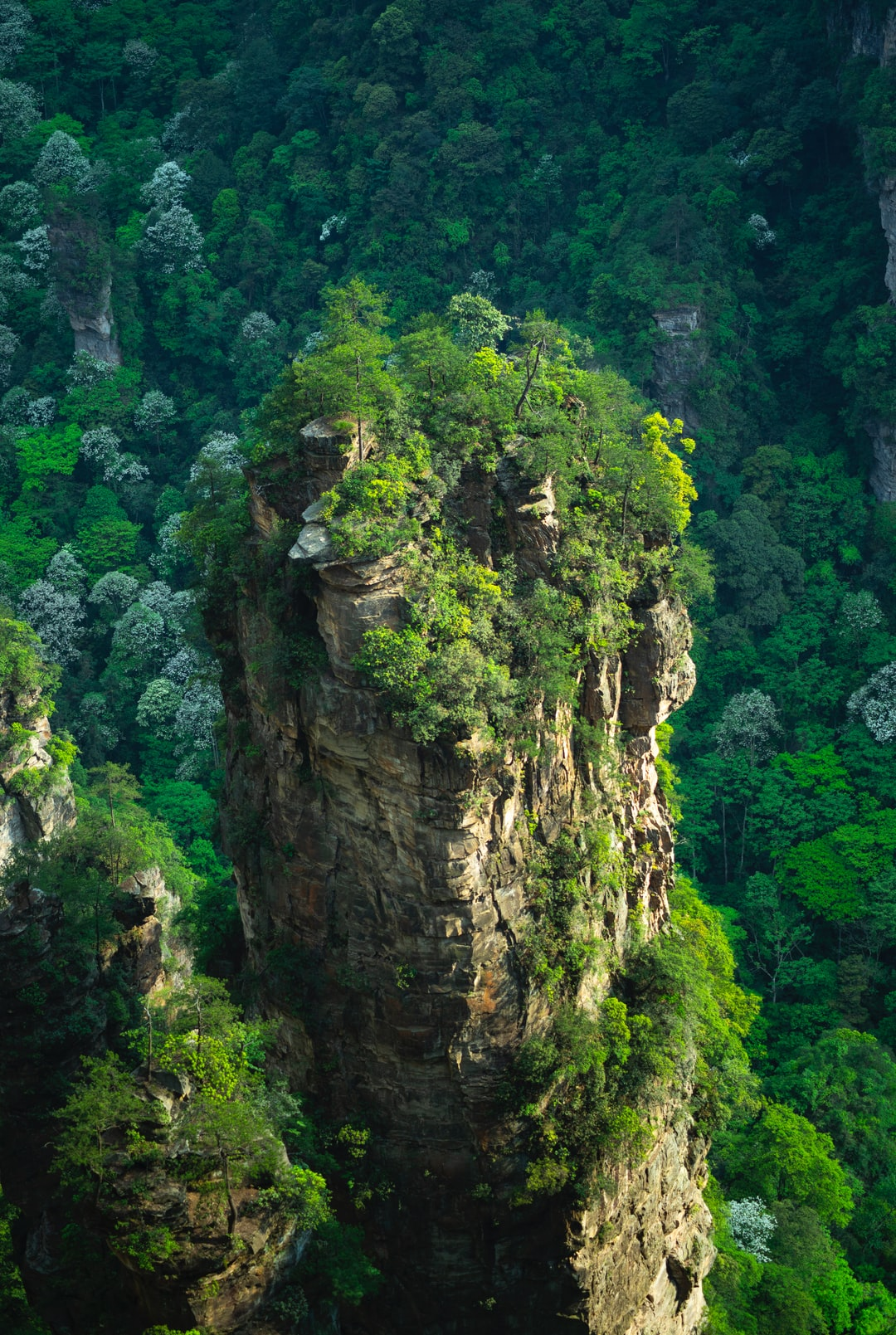 The Zhangjiajie National Park in China really looks a lot like Pandora. They said that James Cameron got inspired from this park when creating Avatar.