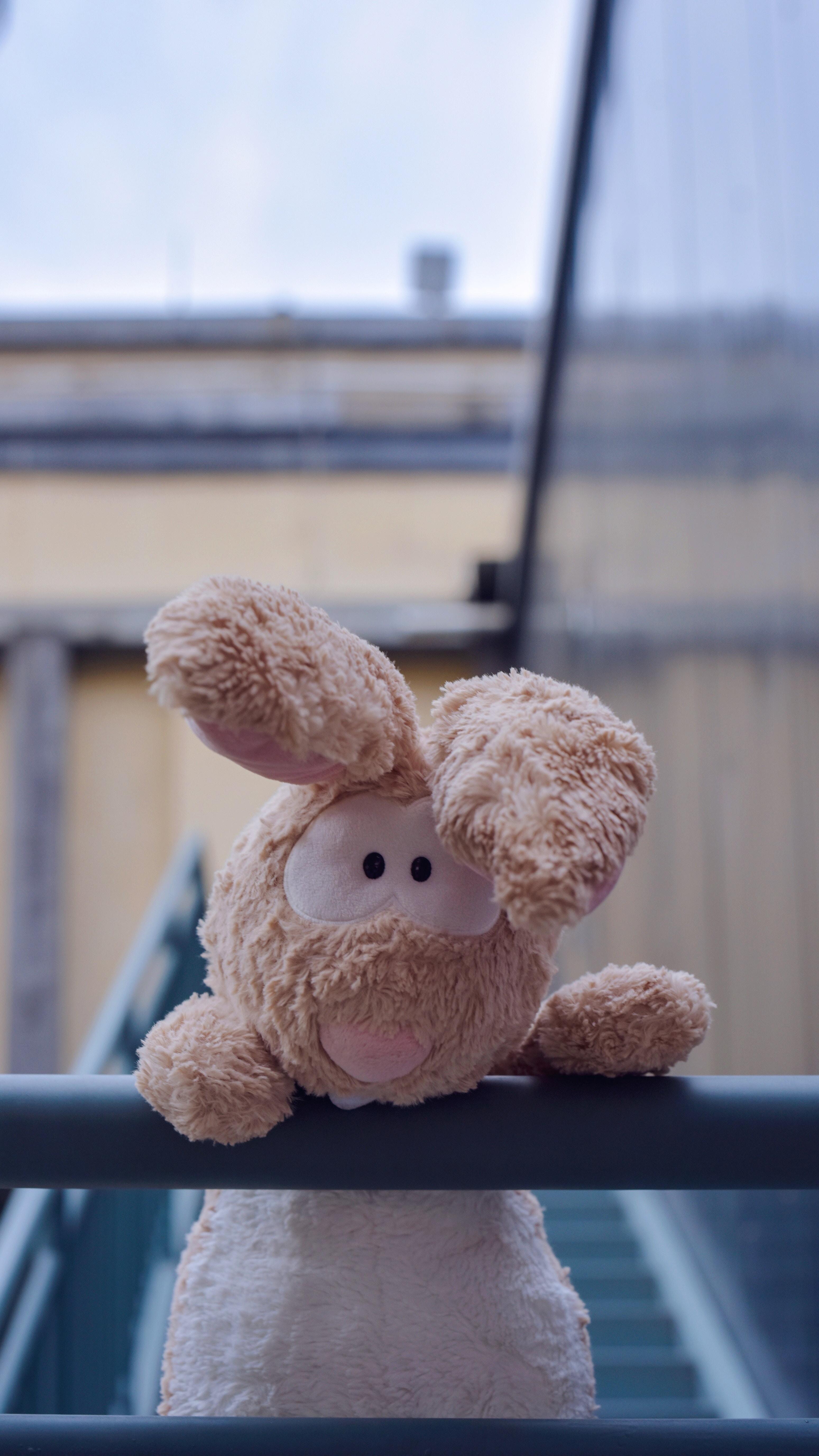 shallow focus of brown animal plush toy