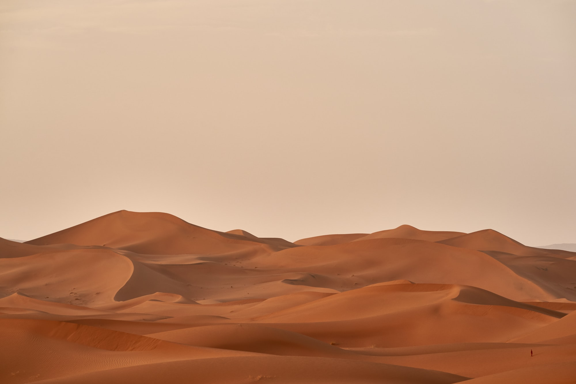 after a sand storm the the air cleans up quickly
