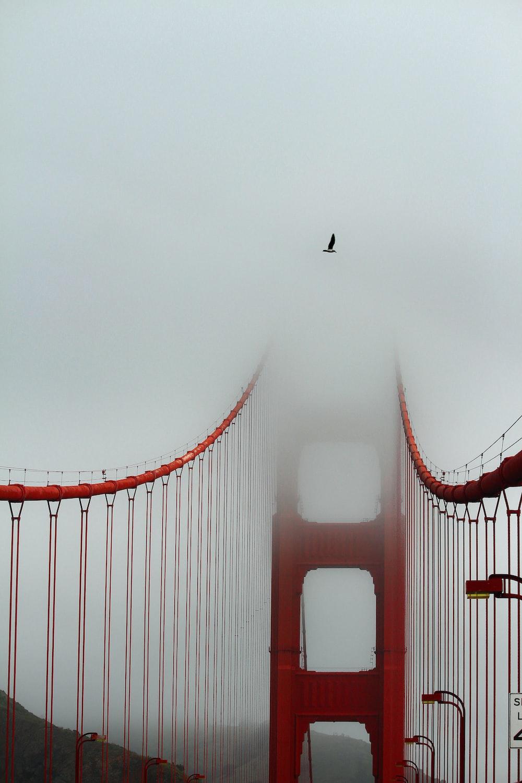 red bridge at daytime