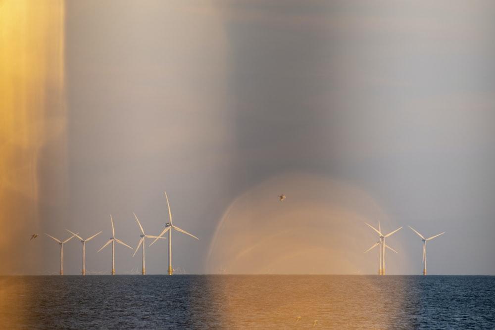 white windmills near ocean