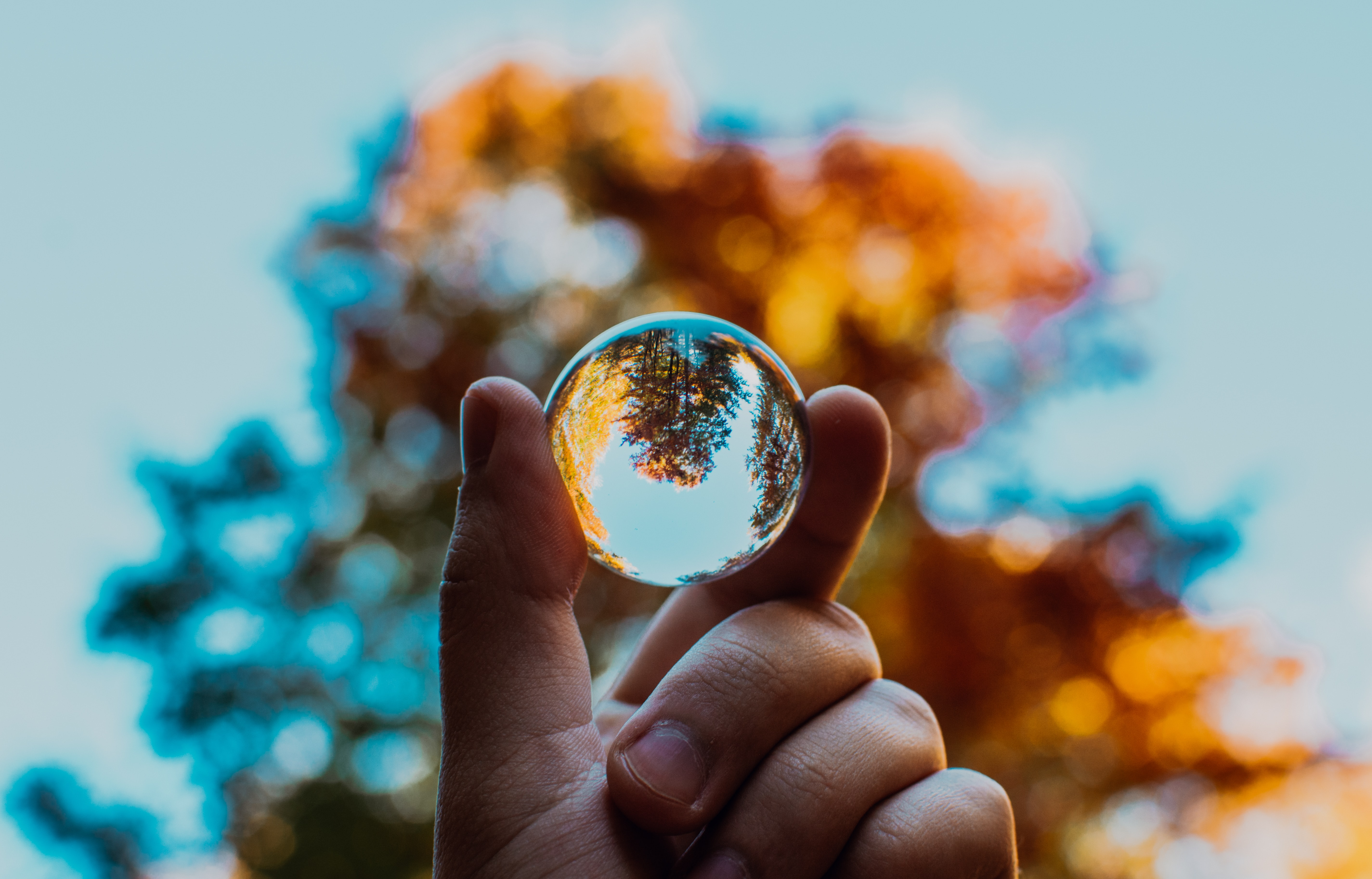 selective focus photography of person holding clear ball