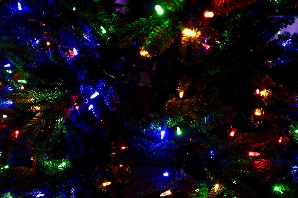 multicolored holiday tree