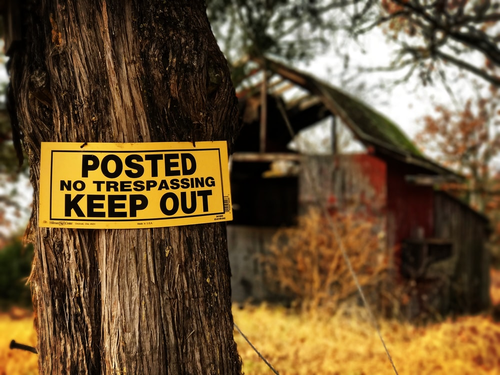 Posted No Trespassing Keep Out signage on tree at daytime