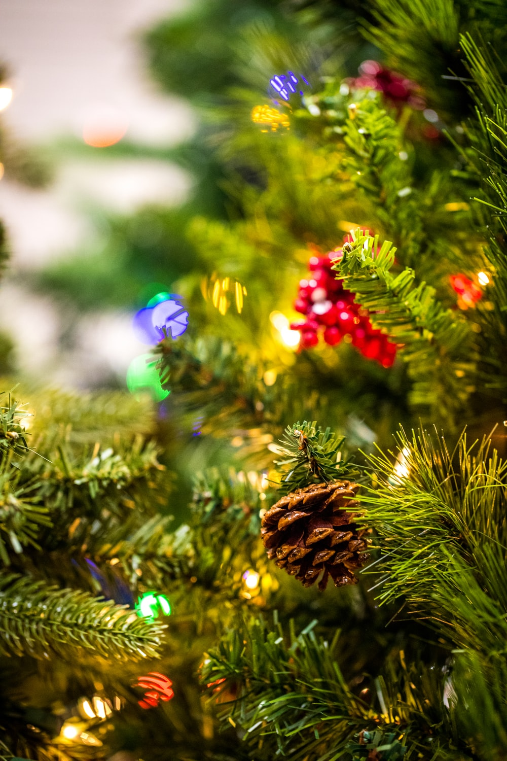 selective focus photography of pinecone and flower ornaments attached on tree