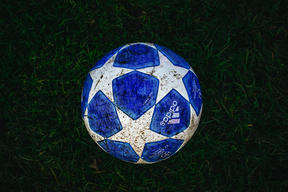 blue and white star print soccer ball on grass