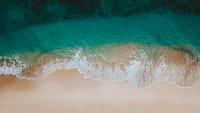 areal photo of seashore