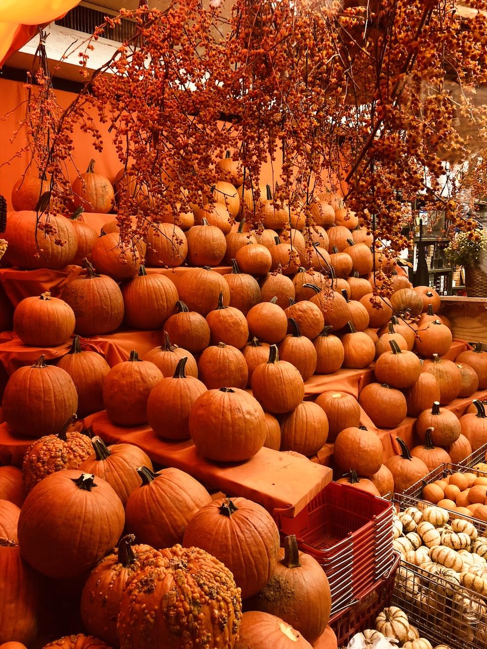 piled pumpkins