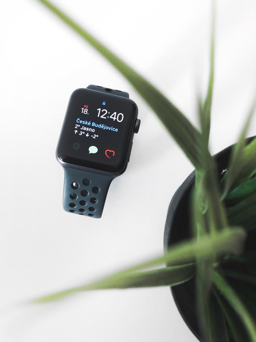 space gray aluminum case Apple Watch near plant