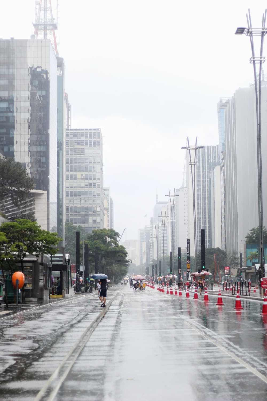 woman walking on street while raning holding gray umbrella