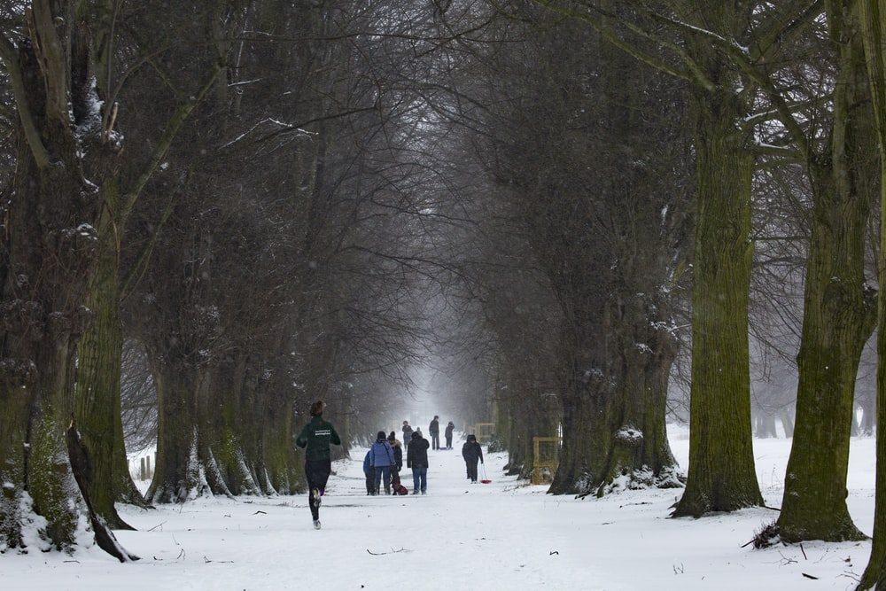 people walking on icy surface