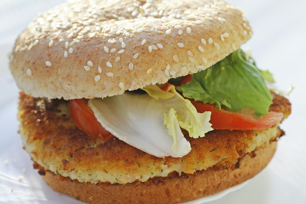 burger patty with vegetable