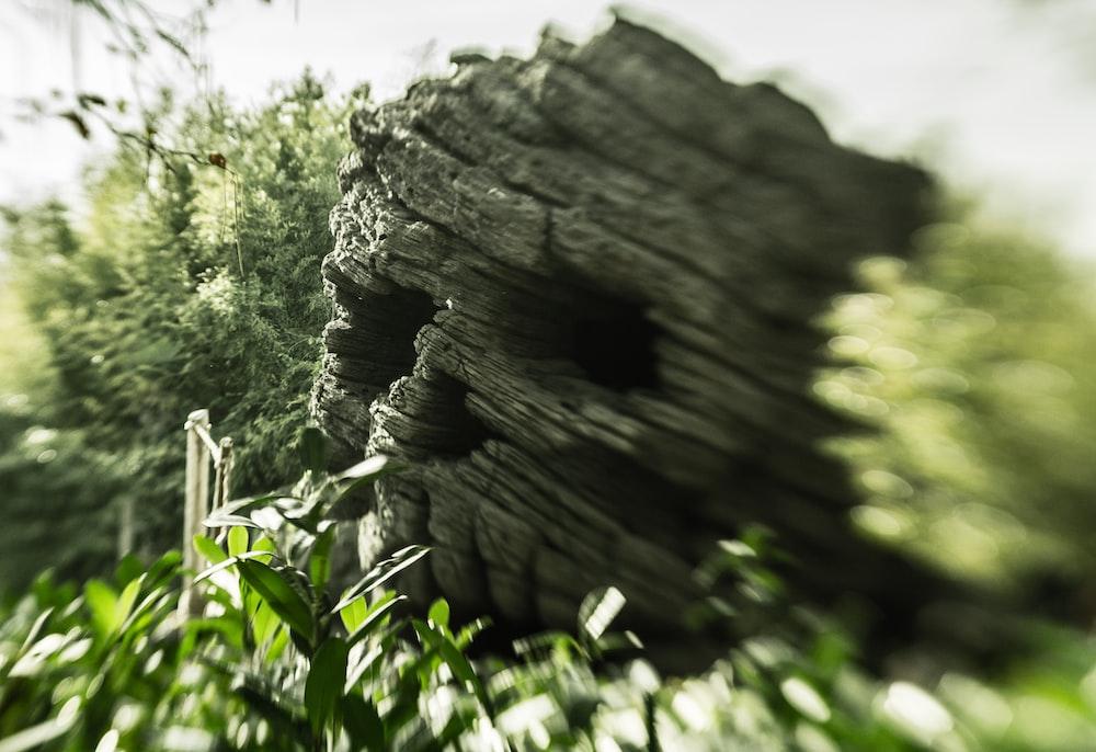 gray rock during daytime
