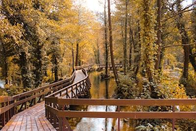 empty wooden bridge over body of water bridge teams background